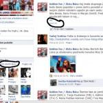 Zlata lisica na Facebook-u
