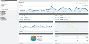 osnovni pogled v google analytics